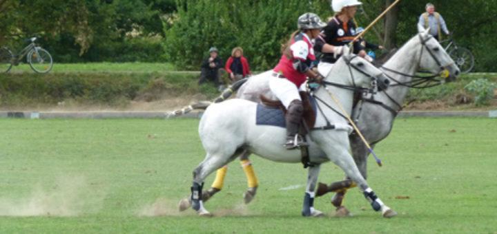 spiel pferd zum reiten